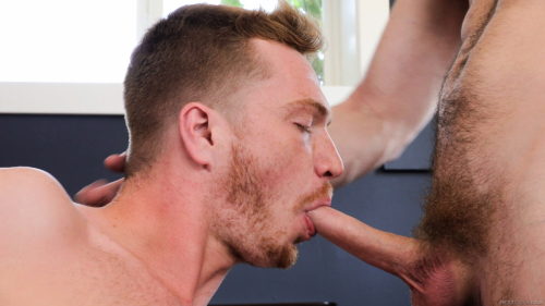 Red hair bearded hipster sucks on a big long cock