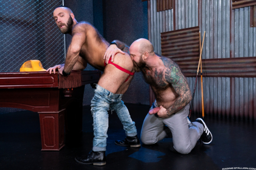 Hairy tattooed muscle hunk rims a dirty jockstrap asshole